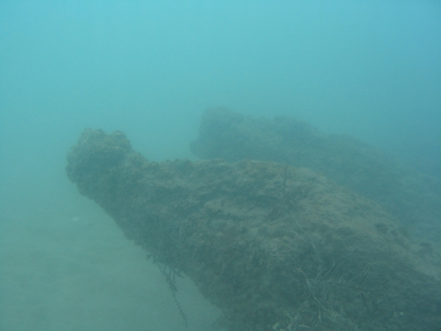 under water photo of the buffalo 01