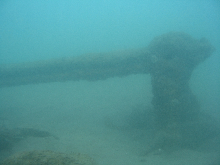 under water photo of the buffalo 02